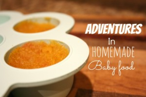 Adventures in Homemade Baby Food