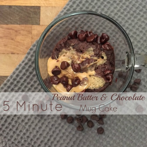 5 Minute Peanut Butter Chocolate Mug Cake // Life Anchored