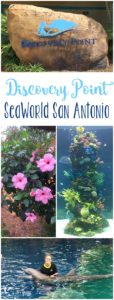 Exploring SeaWorld San Antonio Discovery Point