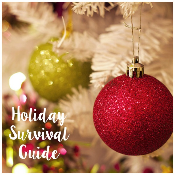 Holiday Survival Guide // Life Anchored #HolidayNecessities #CG