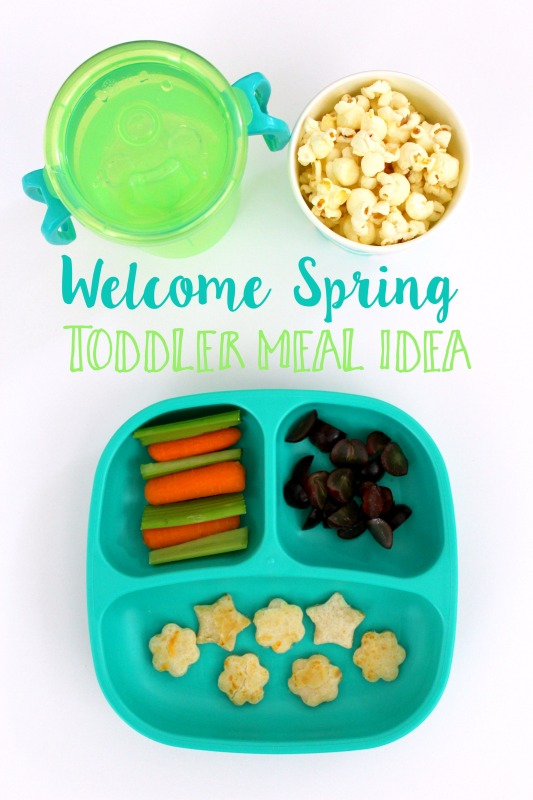 Welcome Spring Toddler Lunch Idea // Life Anchored AD #DiscoverAnnies