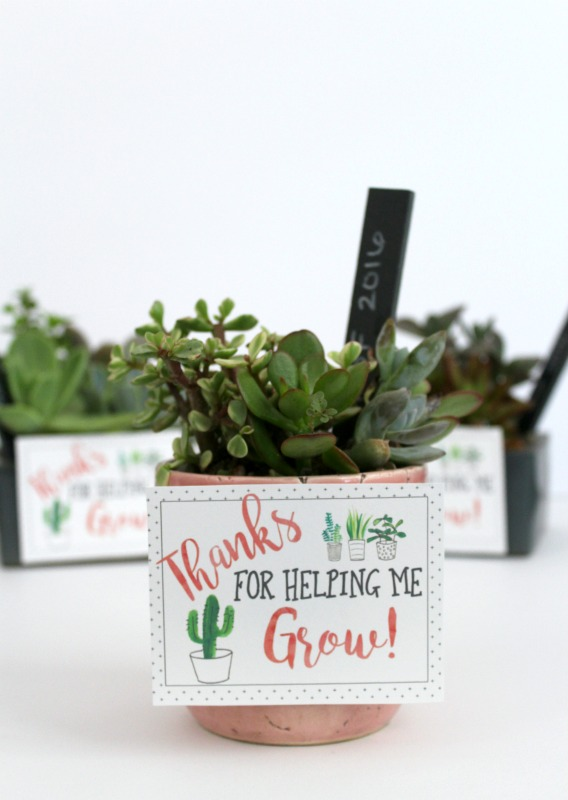 Thanks for Helping Me Grow Teacher Appreciation gift diy // Life Anchored