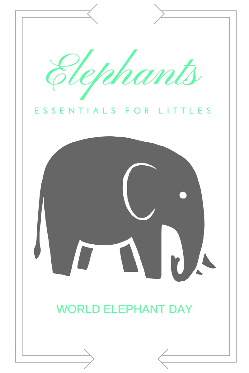World Elephant Day essentials // Life Anchored