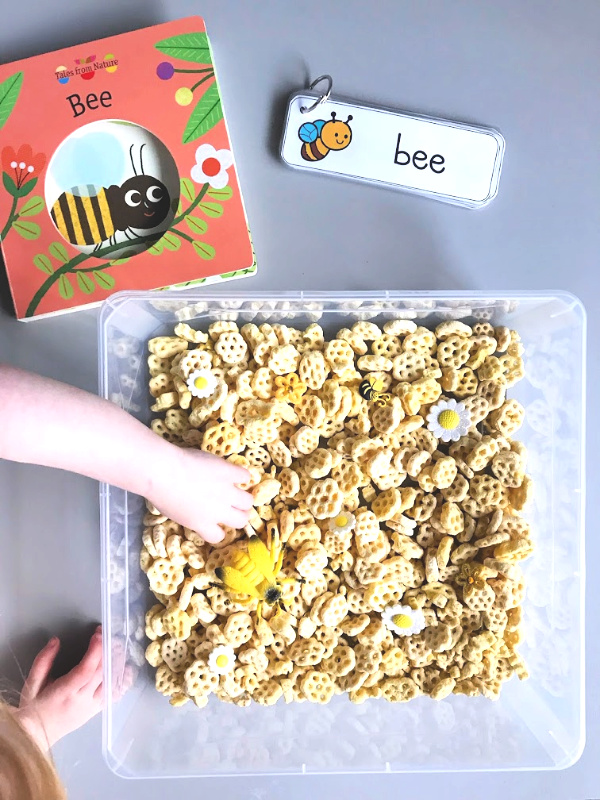 Honey Bee Pollinator Sensory Bin // Life Anchored